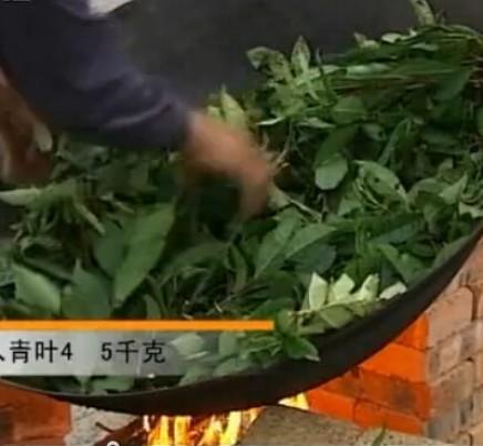 Organic Dark Tea Fu Zhuan Cha
