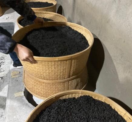 Organic Wuyi Lao Cong Shui Xian