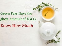 Green Teas Have the Highest Amount of EGCG – Know How Much