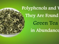Polyphenols and Why They Are Found in Green Tea in Abundance