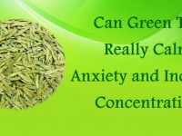 Can Green Tea Really Calm Anxiety & Increase Concentration