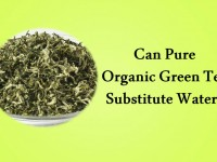 Can Pure, Organic Green Tea Substitute Water?