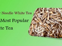 Silver Needle White Tea – The Most Popular White Tea