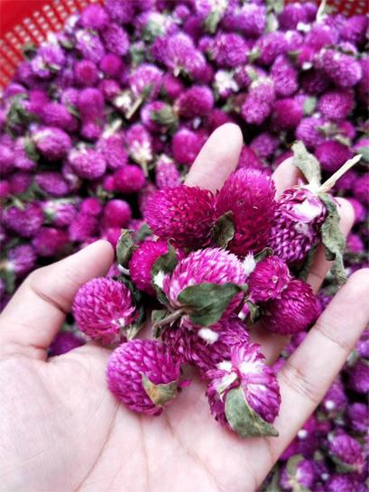 Blooming Tea Processing 4