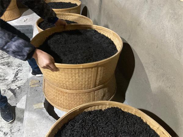 Charcoal Roasting of Organic Wuyi Lao Cong Shui Xian 3
