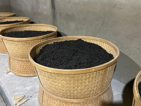 Charcoal Roasting of Organic Wuyi Lao Cong Shui Xian 4