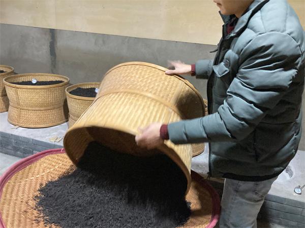 Charcoal Roasting of Organic Wuyi Lao Cong Shui Xian 5
