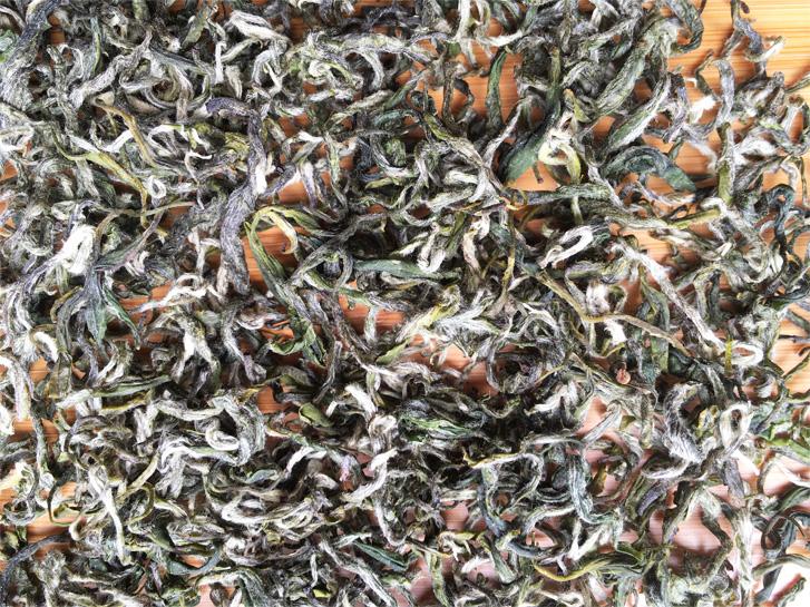Organic Bi Luo Chun