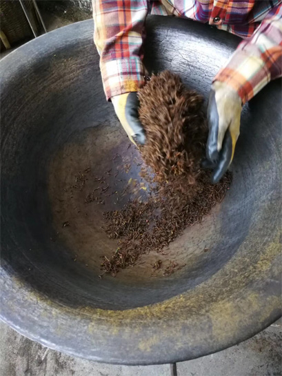 Traditional Processing of Keemum Haoya Black Tea