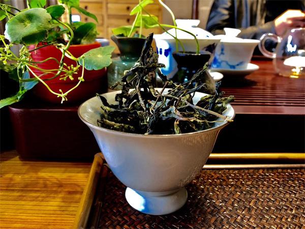 Yiwu Gua Feng Zhai Raw Pu-erh