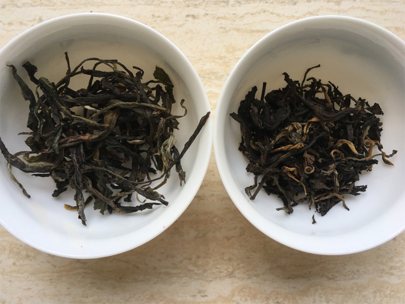Vintage Pu-erh Tea and Black Tea 1