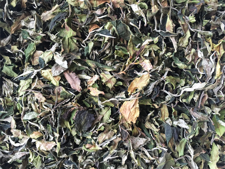 Danzhu white tea