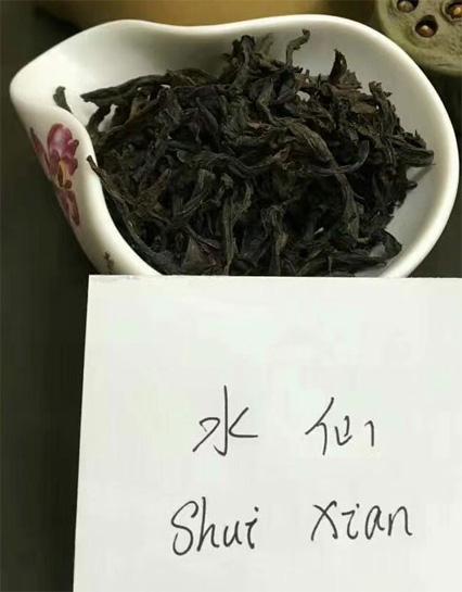 Charcoal Roasted Shui Xian
