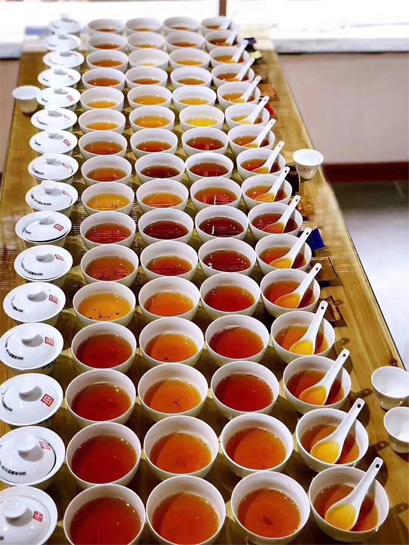 Regular Tea Tasting