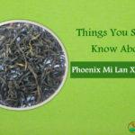 Mi Lan Xiang Tea