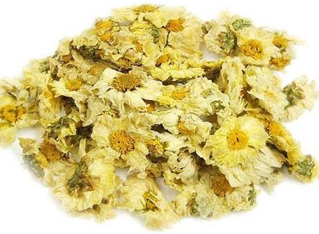 chrysanthemum 7