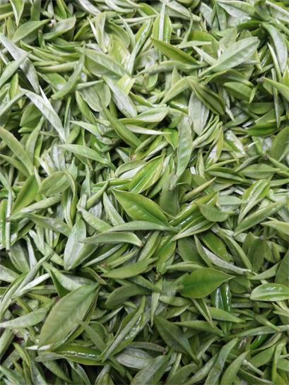 Low Land Spring Tea 2