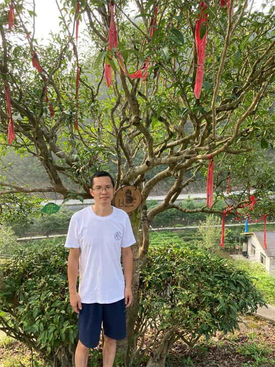 Bao Jing Huang Jin Cha 7